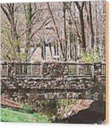Aboratorium Bridge Wood Print