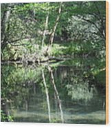 Abrams Reflections Wood Print