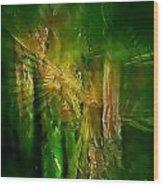 Abs 0260 Wood Print