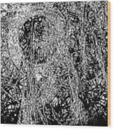 Abs 0284 Wood Print
