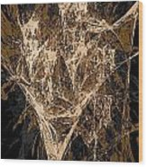 Abs 0287 Wood Print