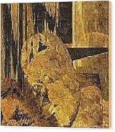 Abs 0362 Wood Print