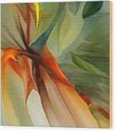 Abstract 021412a Wood Print