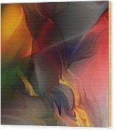 Abstract 021912a Wood Print