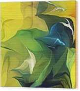 Abstract 052912 Wood Print