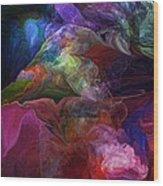 Abstract 072812 Wood Print