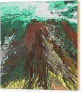 abstract 082511A Wood Print