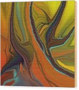 Abstract 110311 Wood Print