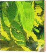 Abstract 1677 Wood Print