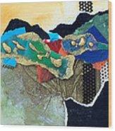 Abstract 2011 No.1 Wood Print
