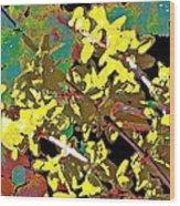 Abstract 216 Wood Print