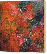 Abstract 269 Wood Print