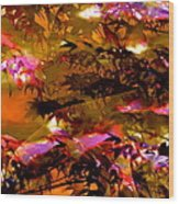 Abstract 282 Wood Print