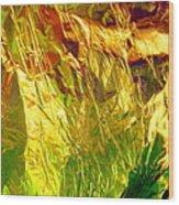 Abstract 3222 Wood Print