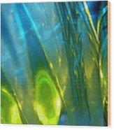 Abstract 3269 Wood Print