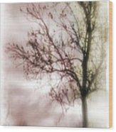 Abstract Fall Trees Wood Print