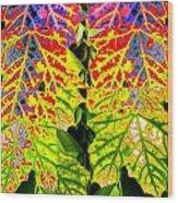 Abstract Fusion 16 Wood Print