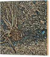 Abstract Grass Wood Print
