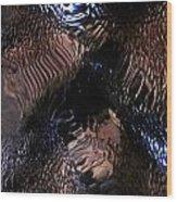 Abstract Photo 100111 Wood Print