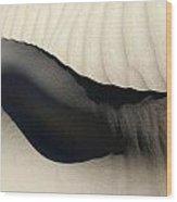 Abstract Sand 4 Wood Print