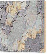 Abstract Tree Bark II Wood Print