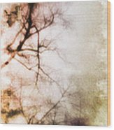 Abstract Trees Wood Print