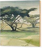 Acacia Wood Print