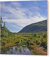 Acadian Marsh Wood Print