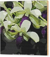 Accented Purple Poster Orchid Fx  Wood Print