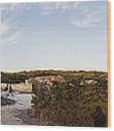 Access To The Beach Of Es Trenc Wood Print