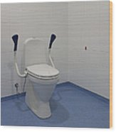 Accessible Toilet Wood Print by Jaak Nilson