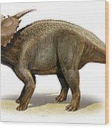Achelousaurus Horneri, A Prehistoric Wood Print