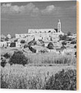 Achna Abandoned Greek Village Now Within The Un Buffer Zone In The Green Line Dividing Cyprus Wood Print