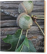 Acorns And Oak Leaves Wood Print