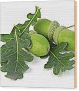 Acorns With Oak Leaves Wood Print by Elena Elisseeva