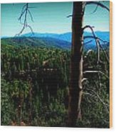 Across The Forested Mountains Wood Print