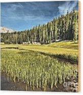 Across The Meadow Wood Print