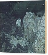 Active Hydrothermal Vent Wood Print