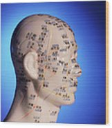 Acupuncture Chart On A Cast Of A Head And Neck Wood Print