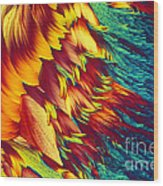 Adenosine Triphosphate Wood Print by Michael W. Davidson