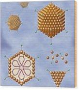 Adenovirus Structure, Artwork Wood Print