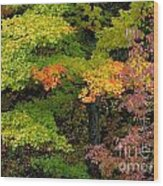 Adirondack Autumn Wood Print