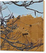 Adobe Branches Wood Print