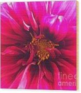 Adorable Flora  Wood Print
