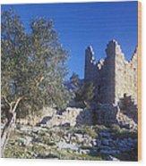 Aegosthena Citadel Wood Print