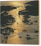 Aerial Shot, Tangier Island, Chesapeake Wood Print