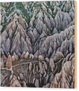 Aerial View Landscape Wood Print by Julio López Saguar