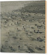 Aerial View Of Hundreds Wood Print