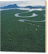 Aerial View Of The Salak River. Mount Wood Print by Tim Laman
