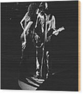 Aerosmith In Spokane 1 Wood Print